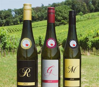 Der Strahlemann-Wein ist ab sofort erhältlich